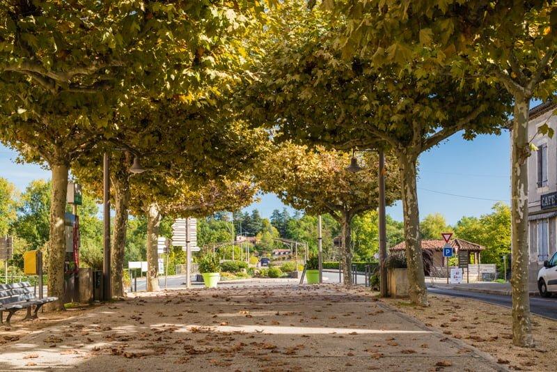 Park w Luzech
