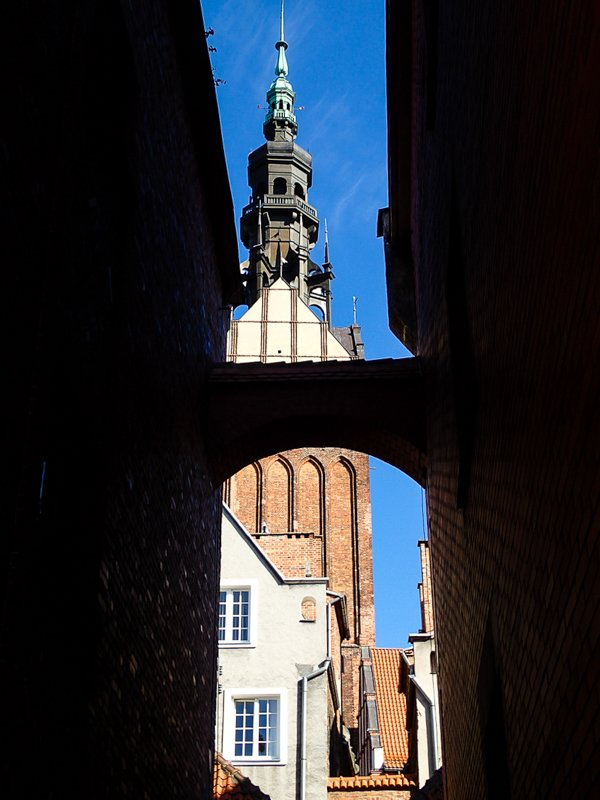 Elbląg ścieżka kościelna i widok na katedrę